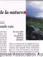 31symbiose terre sauvage fev 1990